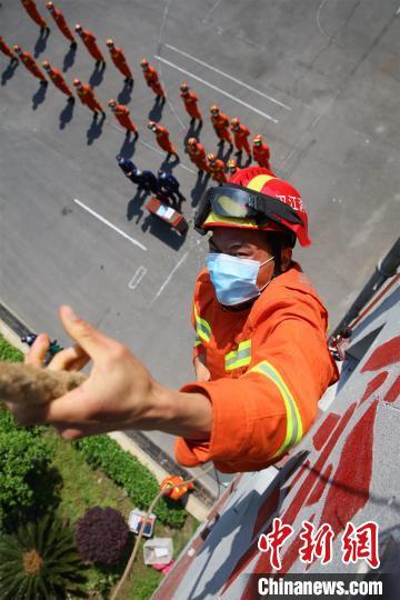 消防指战员进行绳索攀爬竞赛 郭峰 摄