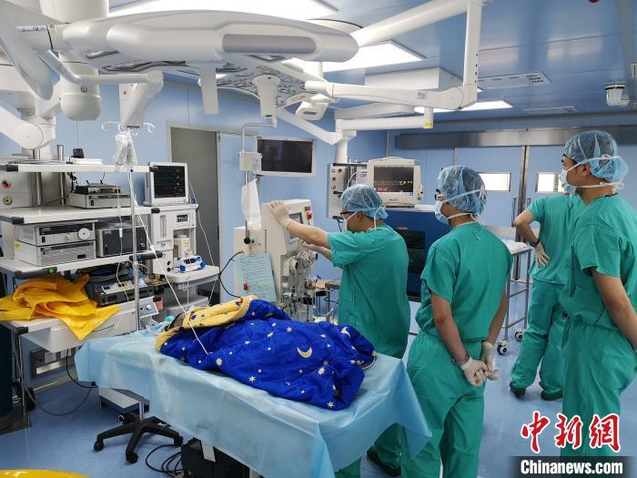 中国专家创新设计出新型生物人工肝支持系统