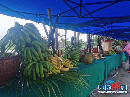 海南侨乡琼海举办中国农民丰收节庆祝活动