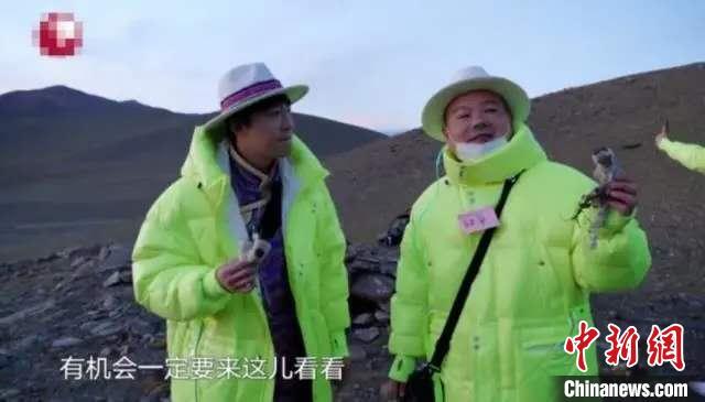 """官方已介入""""综艺嘉宾采摘西藏珍稀植物""""事件调查"""