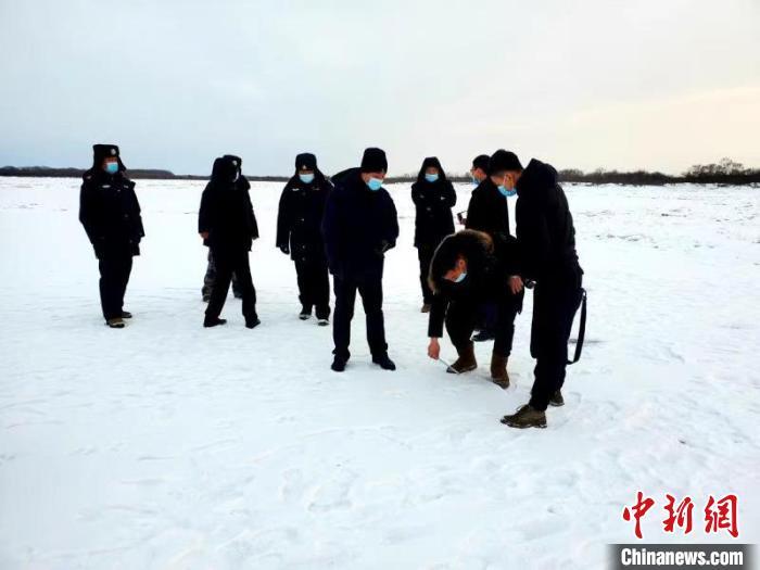 黑龙江省虎林市边境发现野生东北虎足迹
