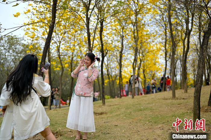 廣西春節假期期間共接待游客2229.9萬人次 實現旅游消費140.87億元