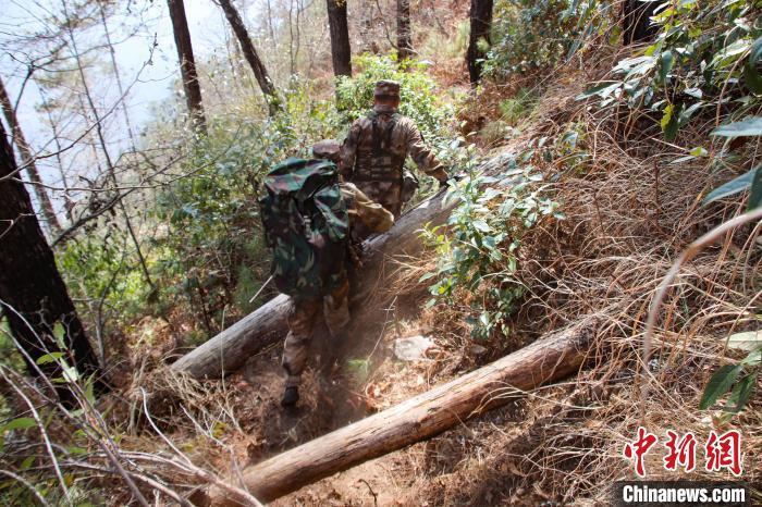 图为官兵们穿越丛林。 张洋 摄