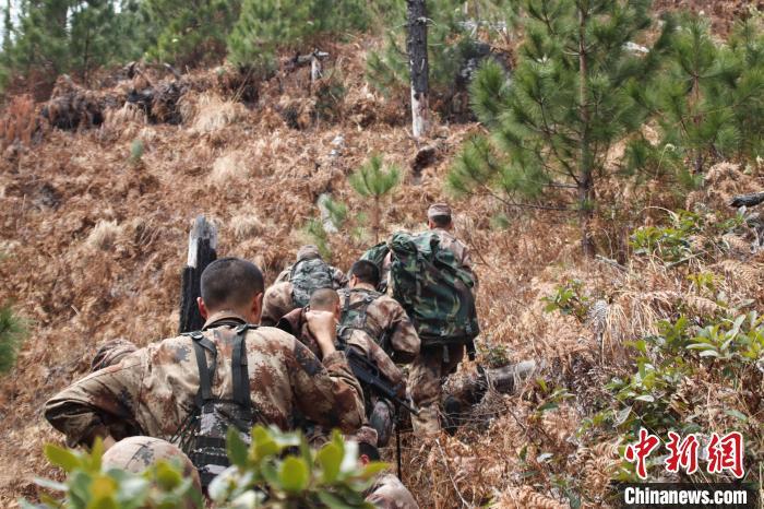 图为官兵们穿越灌木丛。 张洋 摄