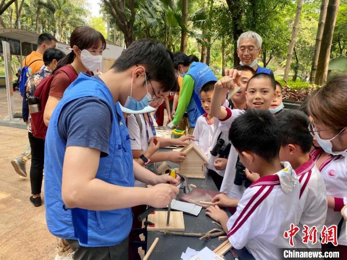 """""""廣東省鳥""""白鷴等6種野生鳥類共近100只被放飛回歸大自然"""