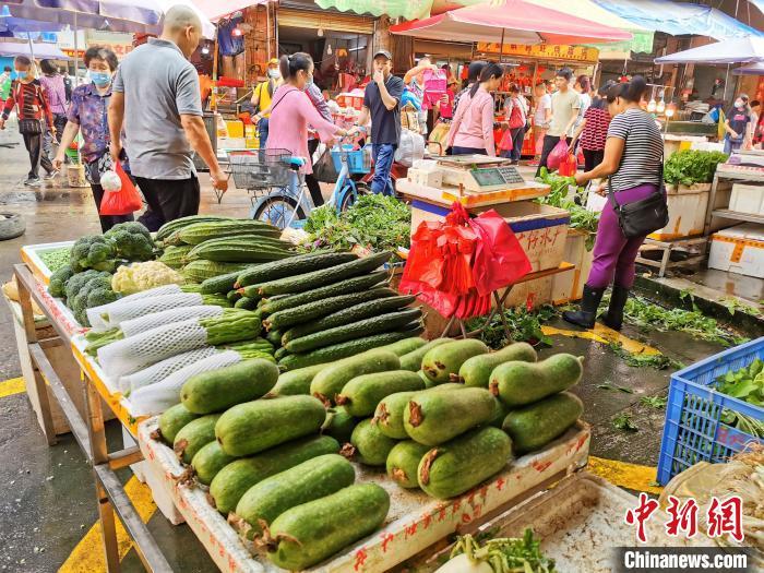 嫩节瓜在台山菜市场被摆在显眼位置销售 李晓春 摄