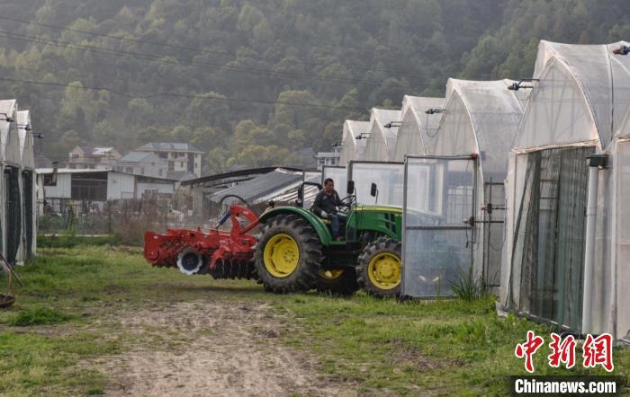 一名农民驾驶圆盘耙进蔬菜种植大棚 范宇斌 摄