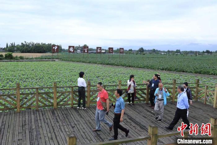 海外华文媒体代表探访什邡雪茄现代农业产业园。 王磊 摄