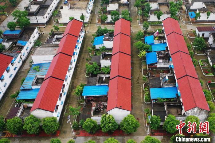 图为邹庄移民村一排排整齐的小楼。 李超庆 摄