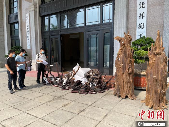 广西凭祥海关向林业部门移交濒危动植物及其制品1.2吨