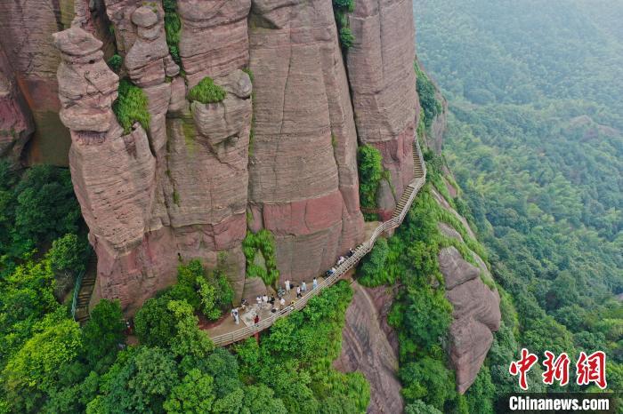 圖為8月14日,航拍下的江西弋陽龜峰景區的高空步行棧道?!⒄祭?攝