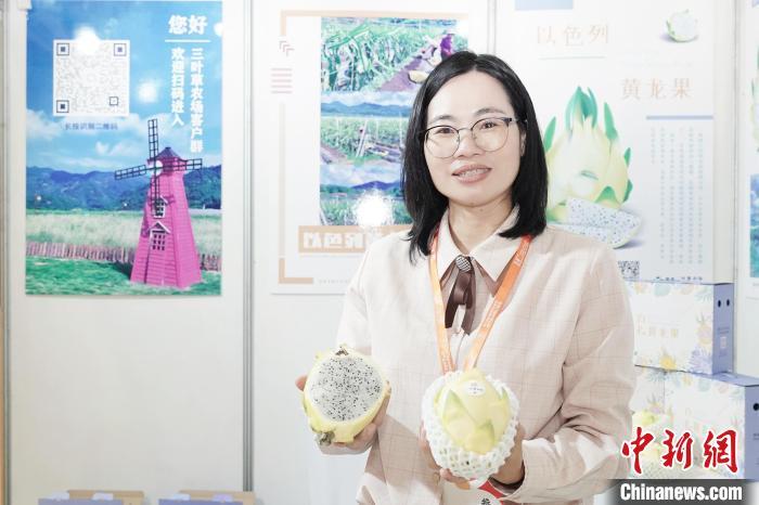 魏小英展示以色列黄龙果。 孙虹 摄