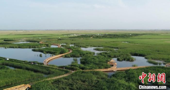 图为甘肃肃州区六分西湖湿地景区,绿草如茵。(资料图) 肃州区委宣传部供图