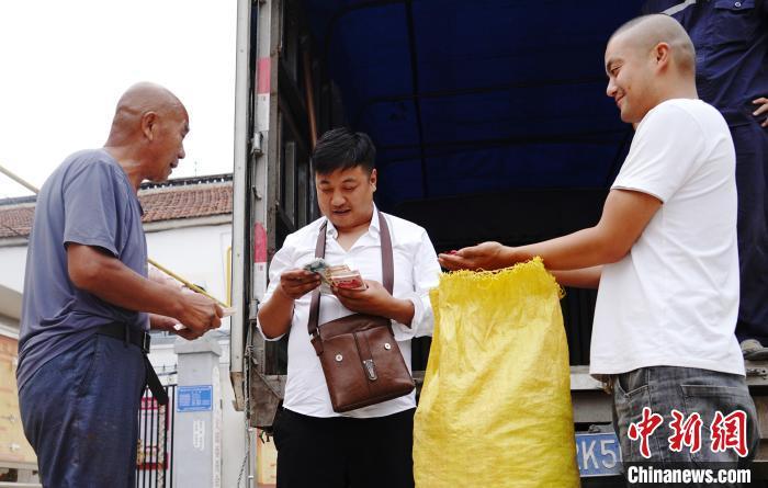 图为四川赶来的商人在从临漳县椒农手中收购干辣椒。 陈乐宾 摄
